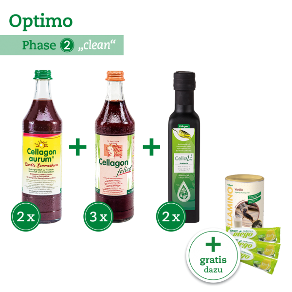 """Optimo"" – Phase2""clean"" 