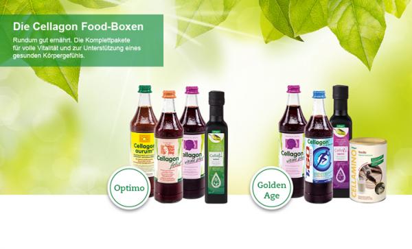 Food-Boxen